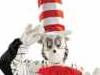 aa23-cat-in-hat-size-multi-40
