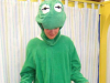 aa6-frog-size-m-l-35